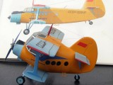 19.An-2-EGG-PLANE