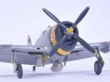 P47D Bushmasters 3