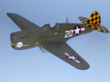 P-40F Decaled 5