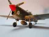 P-40F Port Nose 2