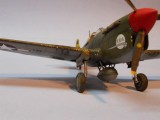 P-40F Stbd Nose 1