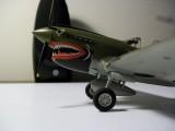 P-40 Portside nose