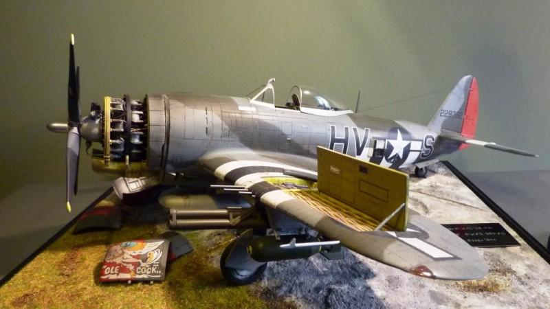 Vintage Fighter Series P 47d Thunderbolt 1 24 Imodeler