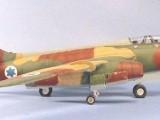 vautour06