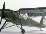 storch0