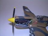 P-40 005