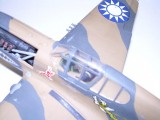 P-40 006