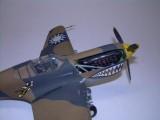 P-40 012
