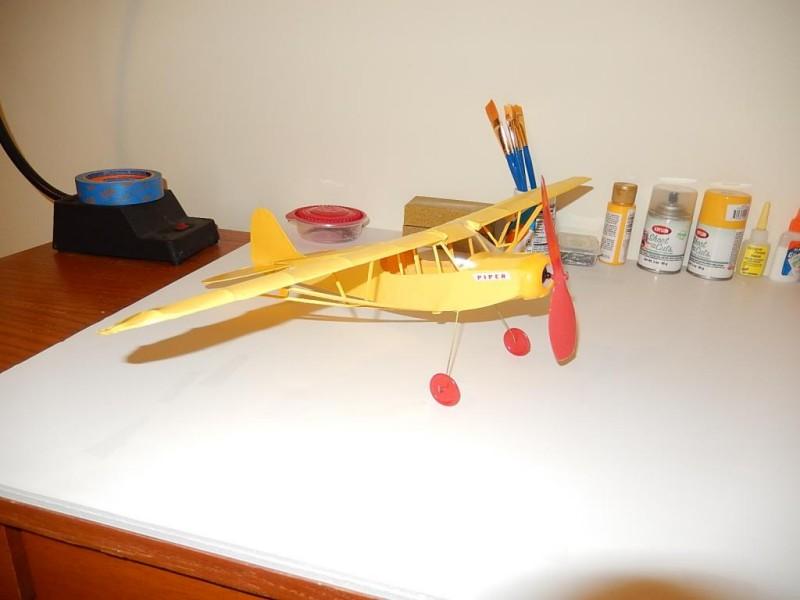 Semi-scale stick and tissue Piper 001