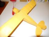 Semi-scale stick and tissue Piper 003
