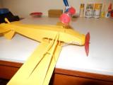 Semi-scale stick and tissue Piper 005