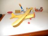 Semi-scale stick and tissue Piper 008