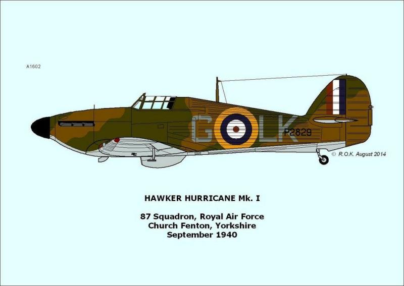02-Hurricane P2829