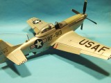 RF-51 D Mustang 003
