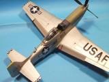 RF-51 D Mustang 004