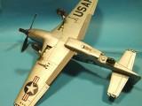 RF-51 D Mustang 006