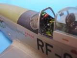 RF-51 D Mustang 010