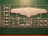 model pics 004
