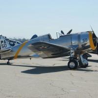 P-36-01