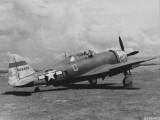 318thFG-19thFS-Miss-Mary-Lou-Saipan-9-July44[1]