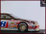 DICK TRICKLE SNICKERS 53 CP