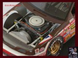 DICK TRICKLE SNICKERS 60 CP