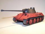 Pink Panther 009